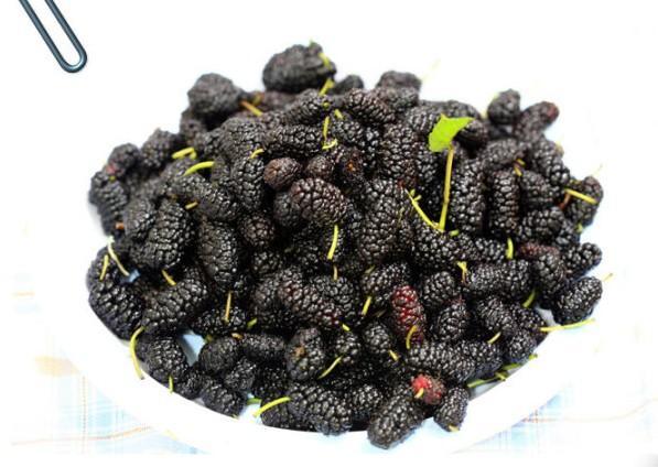 蓝莓蜜汁桑葚的制作教程