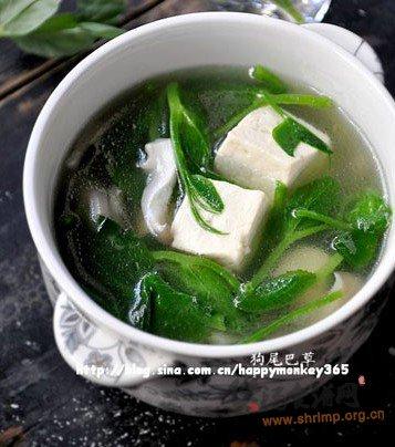 豌豆蘑菇豆腐汤的做法