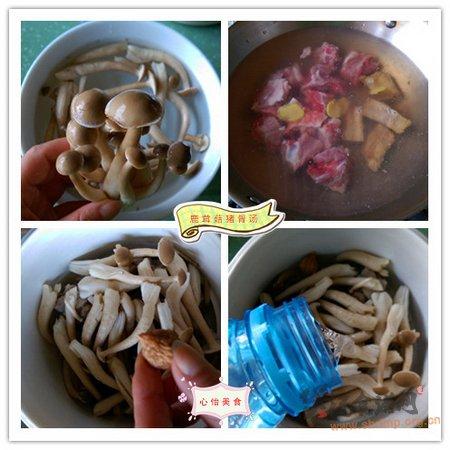 鹿茸菇猪骨汤的做法